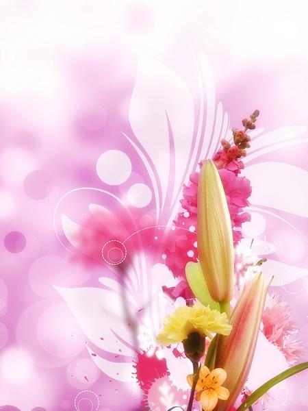 Цветок оптом хмельницкий